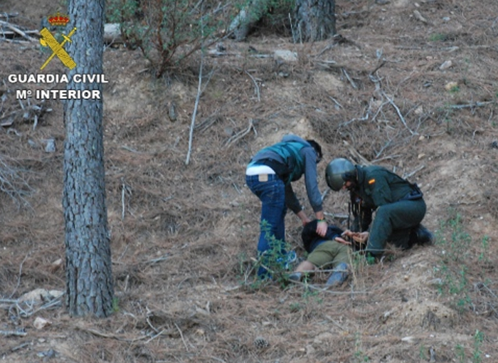 La plantación de marihuana del Parque Natural de la Sierra de Norte de Guadalajara estaba atendida y vigilada las 24 horas