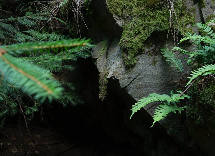 Cuatro espeleólogos portugueses han quedado atrapados en la cueva Cueto-Coventosa (Cantabria)