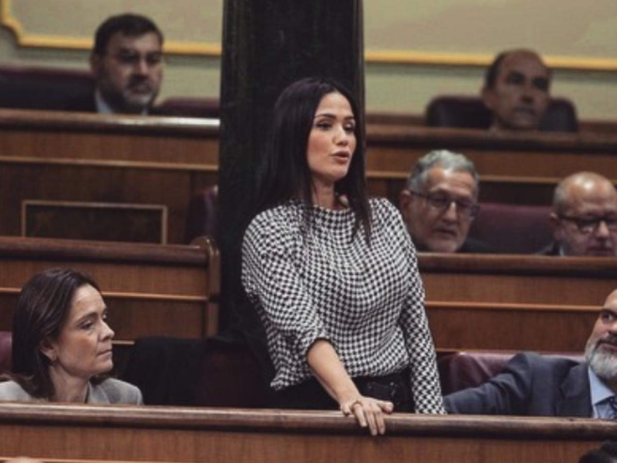 Actor Porno En Parlamento mireia borrás, diputada de vox, víctima del machismo en política
