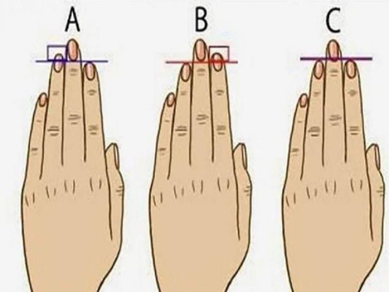 tamano dedos