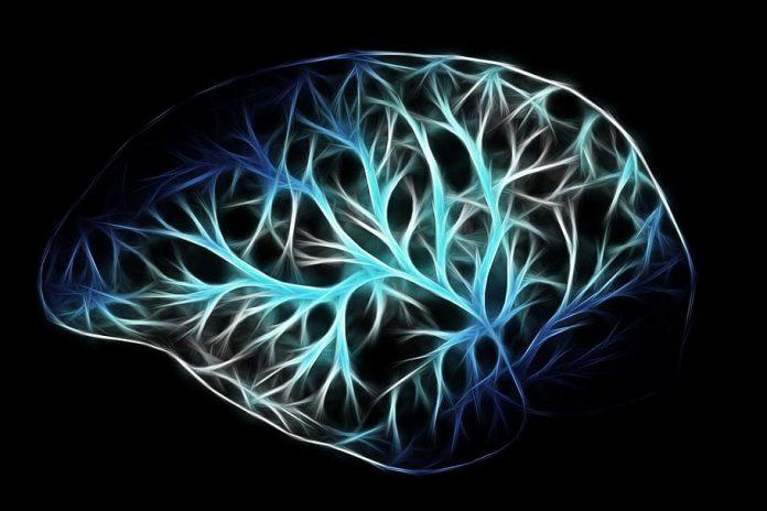 cerebro morir