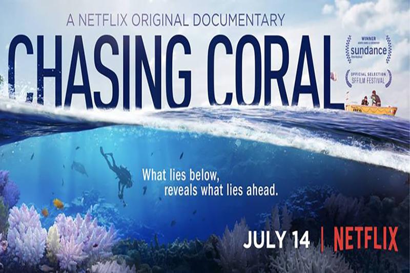 chasing coral netflix
