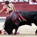 La complicidad del PSOE para emitir los toros en TVE abre una crisis con Podemos