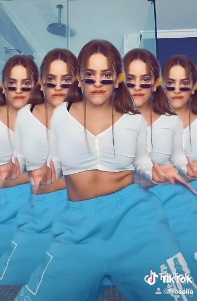 Detalles del vídeo de la Rosalía