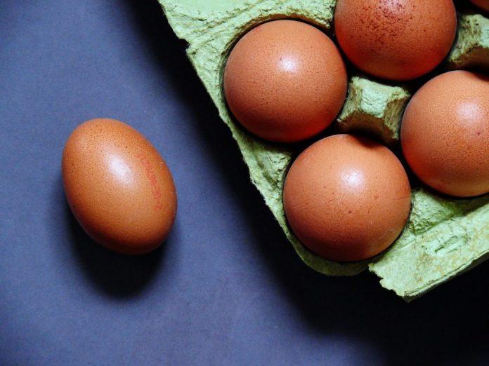 elegir huevos