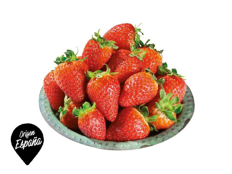 fresa-lidl