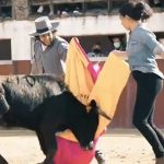 Rocío Monasterio lidia con Morante de la Puebla para ganarse a los taurinos el 4-M