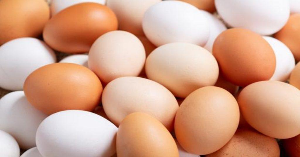 Conoce al huevo