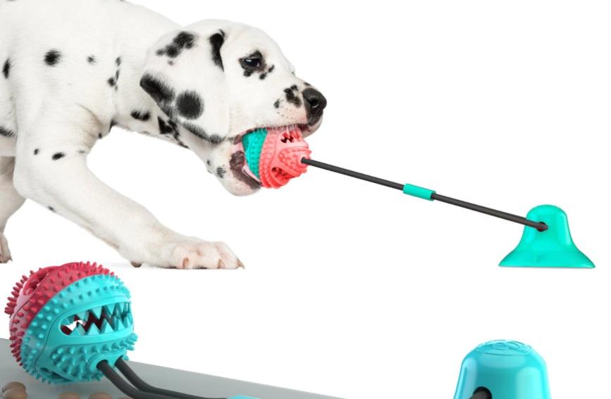 juguete perro cuerda