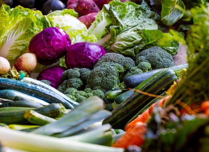UNA DIETA VARIADA, IMPORTANTE PARA LA SALUD FÍSICA Y MENTAL