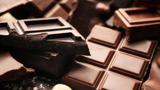 chocolate gato