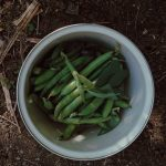El sofrito para hacer un plato '10' con unas judías verdes de bote